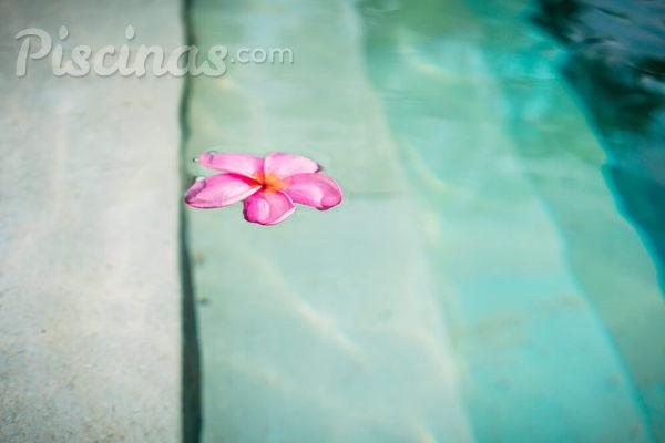 Entenda o custo de manutenção de uma piscina